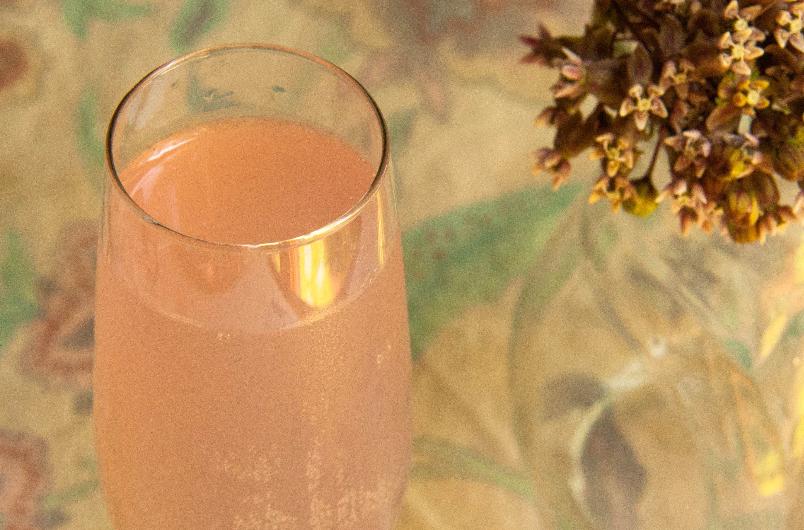 The Butterfly Kiss: a Milkweed Flower Cocktail
