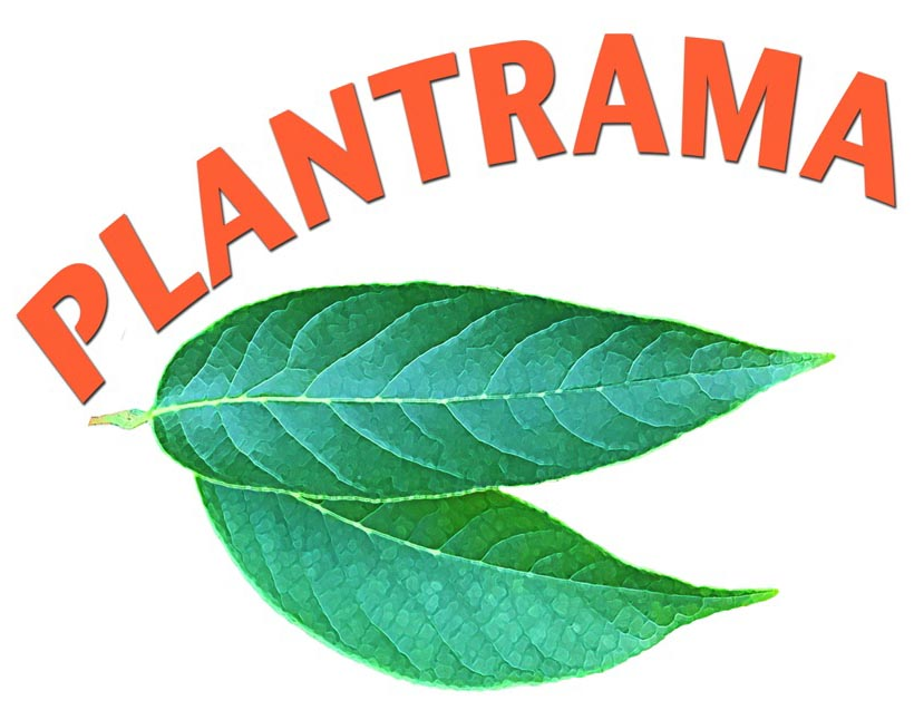 Plantrama Podcast: Science, Art, and Dinner: It's All in your Backyard