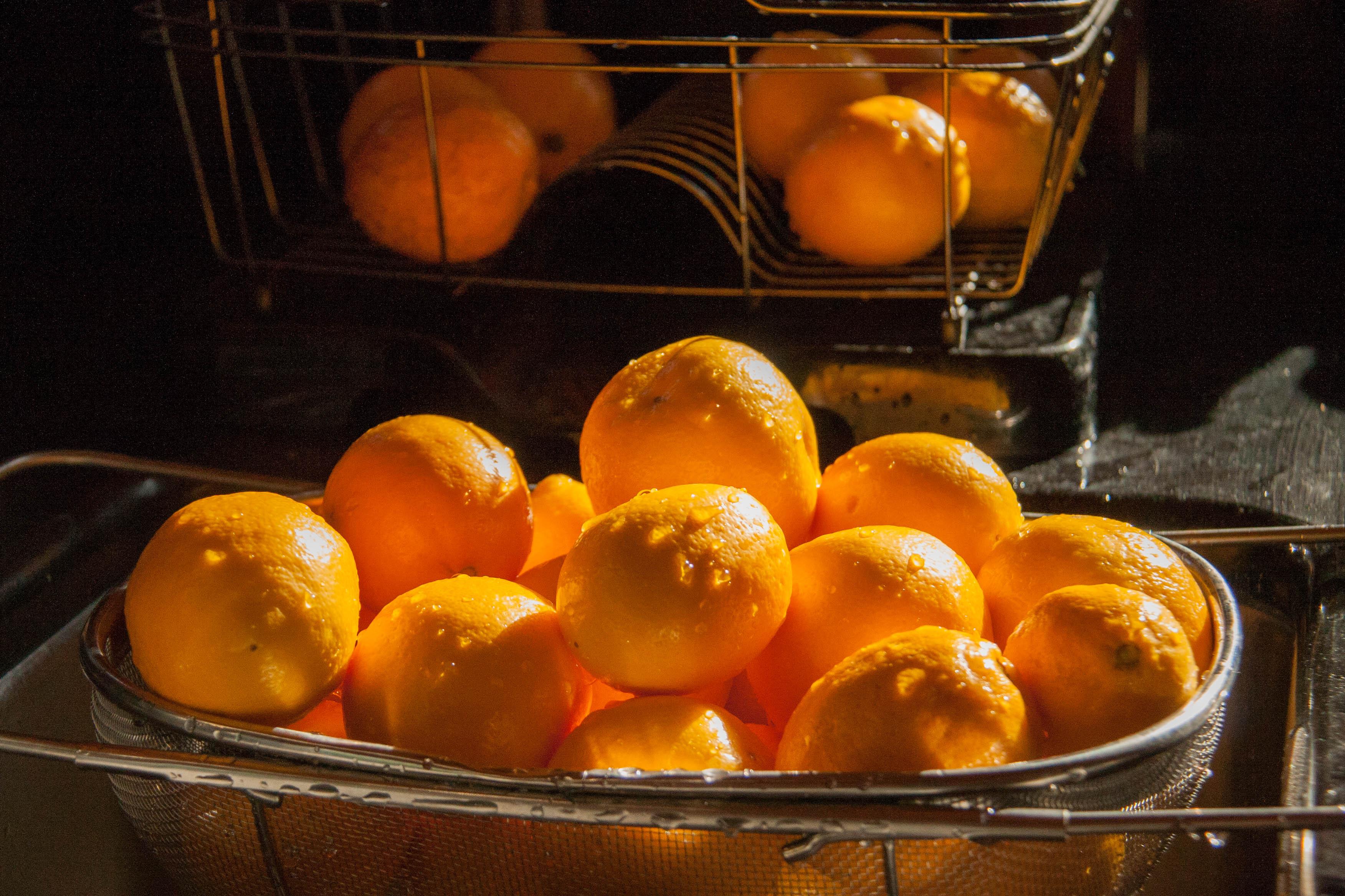 Improved Meyer Lemon (Citrus x Meyeri 'Improved')