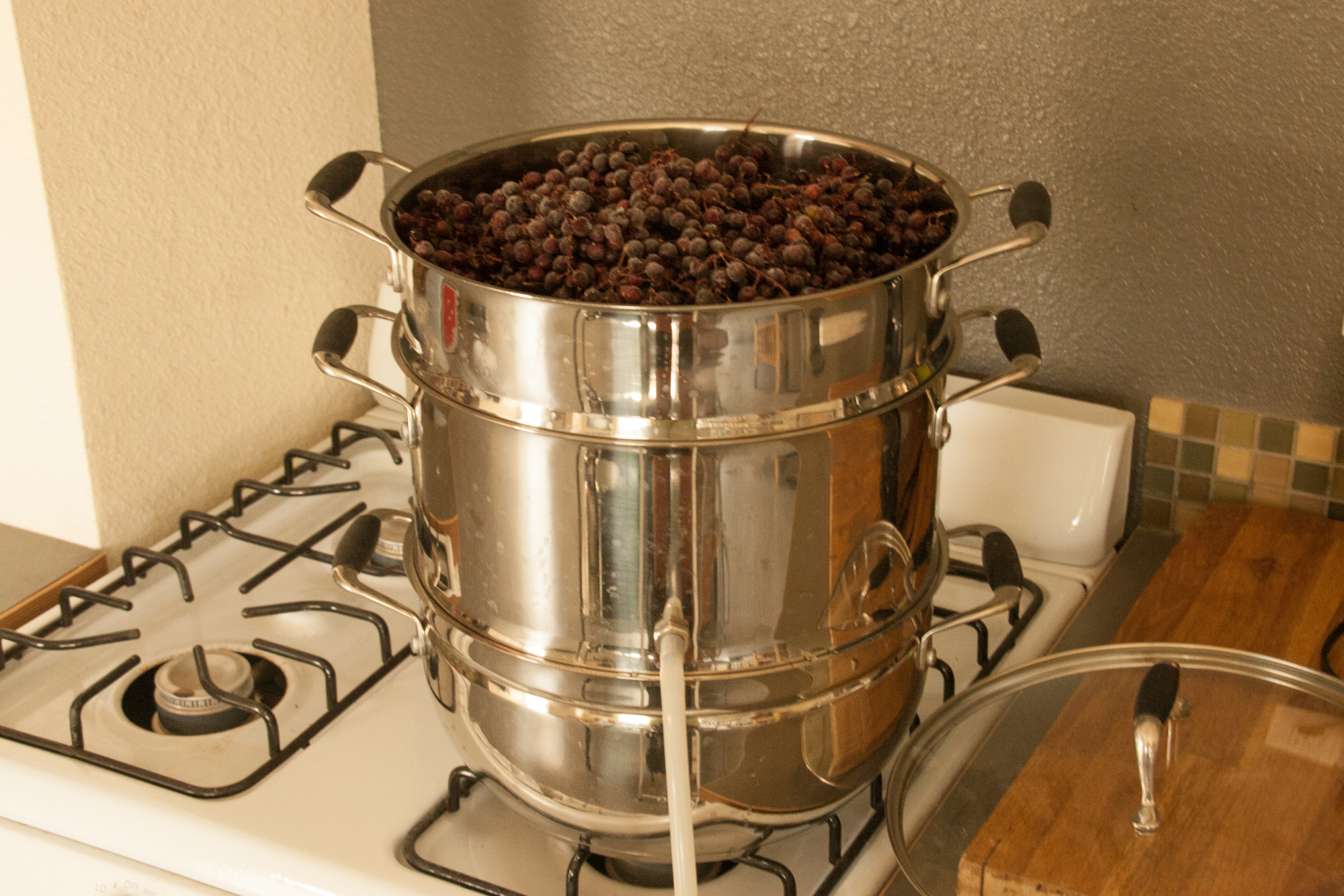 Why Every Forager Should Have a Steam Juicer