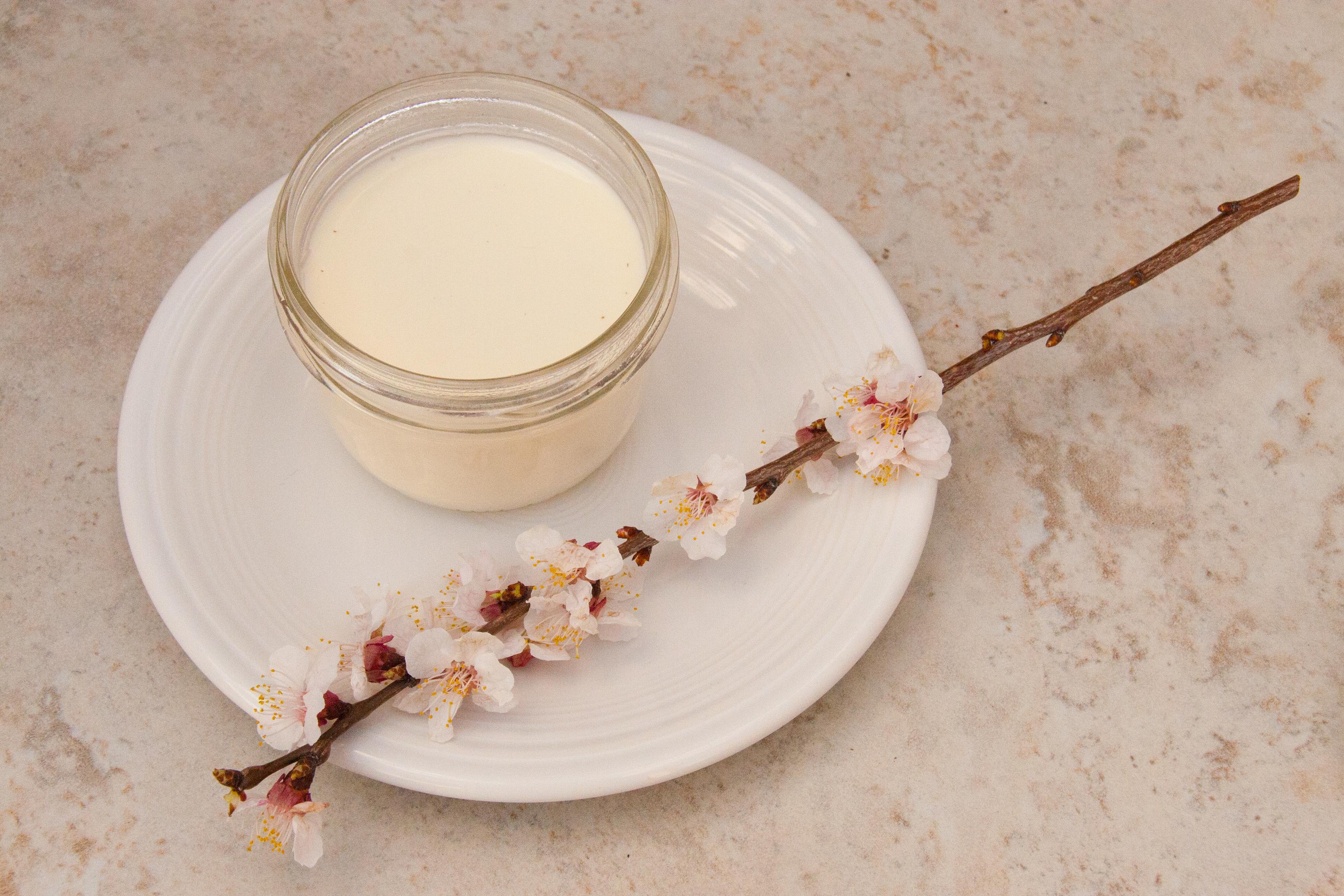 Plum Blossom Panna Cotta Recipe
