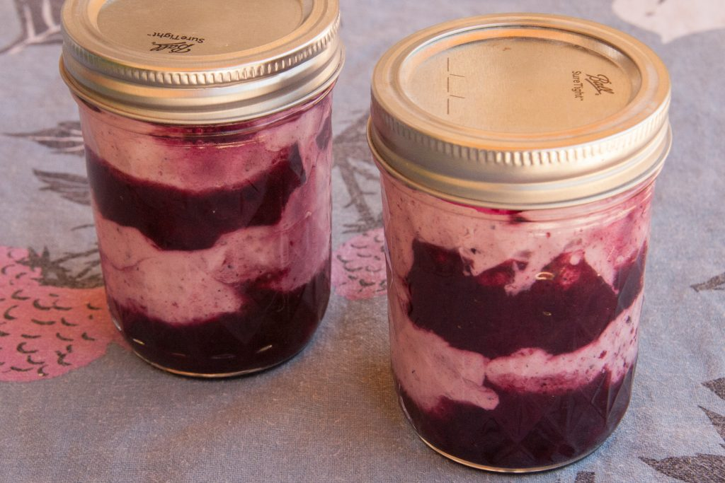 wild blueberry fool