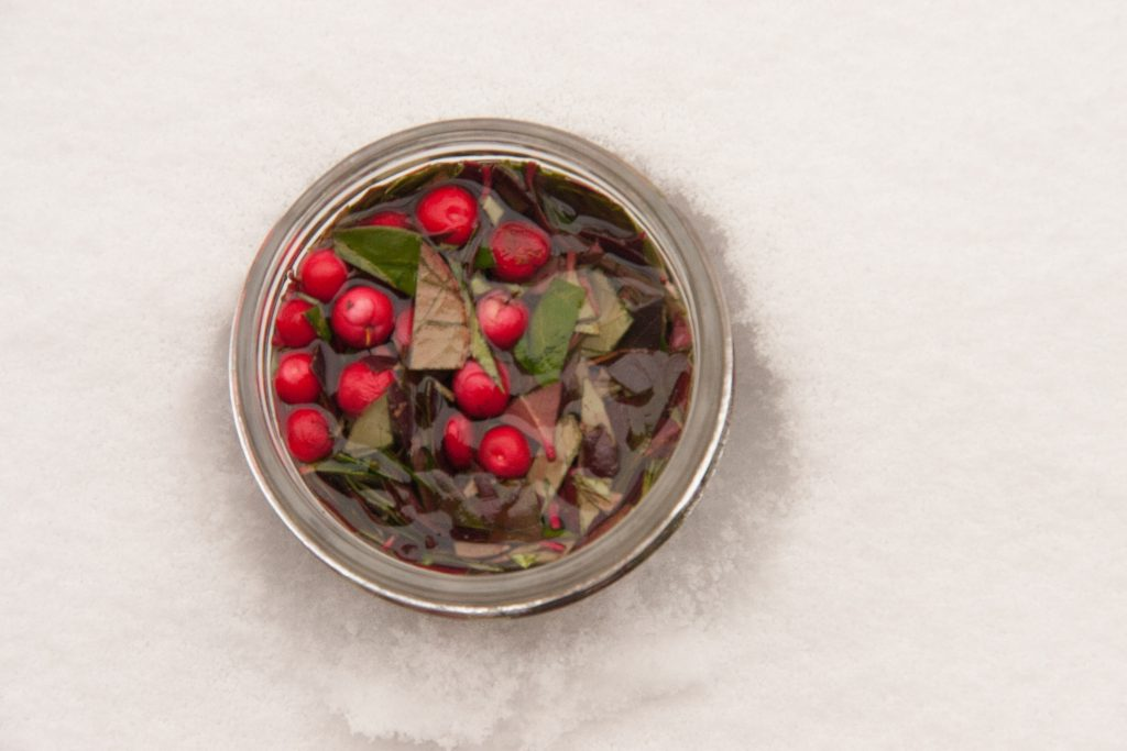 making wintergreen extract